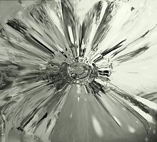 glass flower - monochrome by fotochic