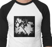 Hummingbird at Twilight Men's Baseball ¾ T-Shirt