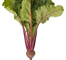 Red Beet by Marlene Hielema