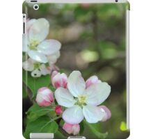 Blushing Apple Blossoms iPad Case/Skin