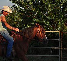 Horse training V by PJS15204