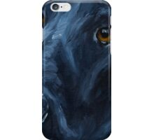 Always Faithful iPhone Case/Skin