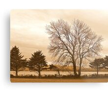 Trees In Sepia......................................Most Products Metal Print