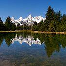 Midday Calm at Schwabacher Landing by Stephen Beattie