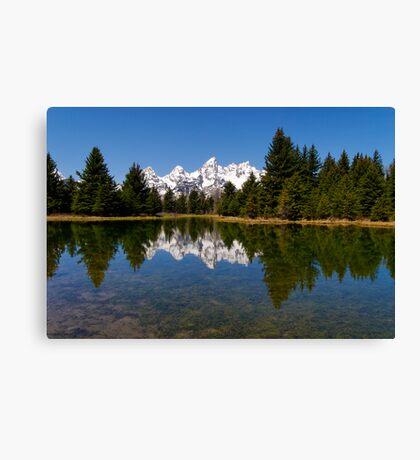 Midday Calm at Schwabacher Landing Canvas Print