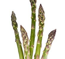 Asparagus by Marlene Hielema