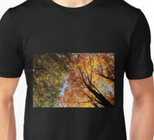 Looking Up - Autumn Leaves Unisex T-Shirt