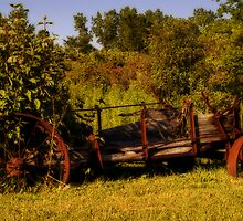 The Wagon by cherylc1