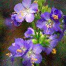 Beauty Of Flower Power by Deborah  Benoit