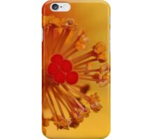 The Centre Of The Hibiscus iPhone Case/Skin