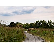 Prairie Path Photographic Print