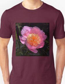 Pink Anemone Peony T-Shirt