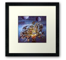 Artic Wonder Framed Print
