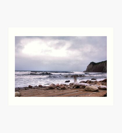 Going Coastal Art Print