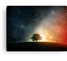 Cosmosition Canvas Print