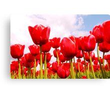 Tulip Fantasy Canvas Print
