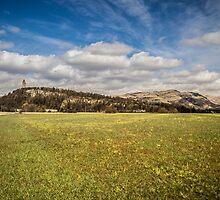 Stirling. by BiffiB