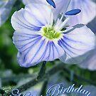 Happy Birthday by MarianaEwa