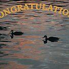 Congratulations Dux by Graham Mewburn