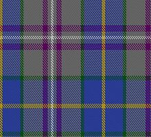 00199 Taobh Dhi Deeside Plaid District Tartan  by Detnecs2013