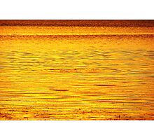 Golden Mullet Splash Photographic Print