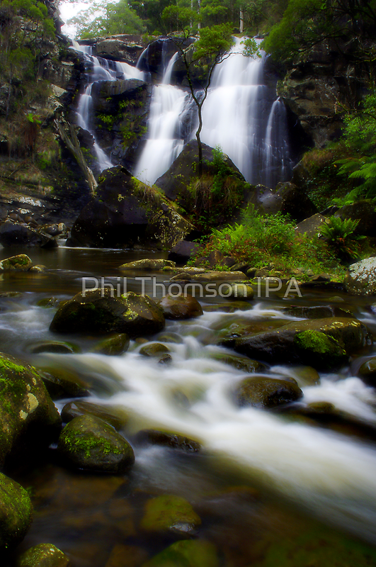 """Grand Whisper"" by Phil Thomson IPA"