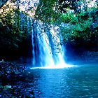 Killen Falls by DUNCAN DAVIE