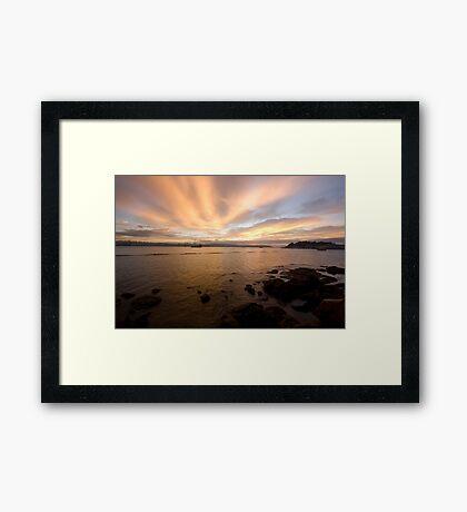 Sunrise At The Botanical Gardens Framed Print