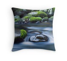 Moss Respite Throw Pillow