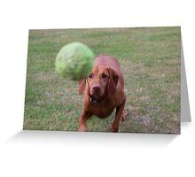 Amber's Tennis Ball Greeting Card