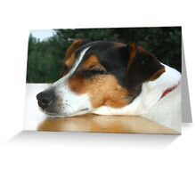 Forty Winks or The Morning After the Night Before! Greeting Card