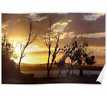 maroochy silhouette Poster