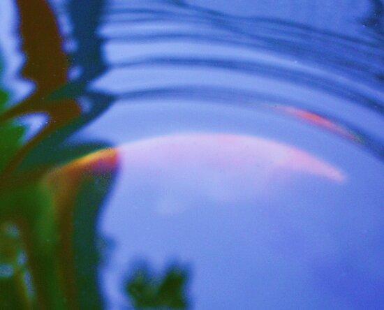 Waters edge by Goldenspirit