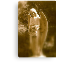 Memories of an Angel Canvas Print