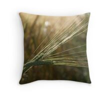 Alberta Barley Throw Pillow