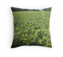 Road from Giverny 1 Throw Pillow