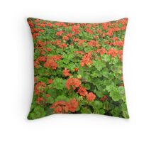 Giverny 2 Throw Pillow