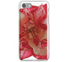 TWO TONE ROSE iPhone Case/Skin