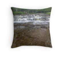 Hunters Brook Throw Pillow