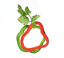 Red and Green Peppers by Drew Gregory