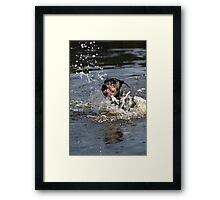 Saver Framed Print