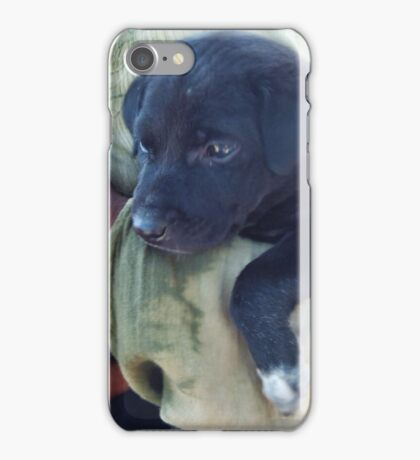 Puppy - Mahabalipuram, India iPhone Case/Skin