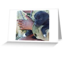 Puppy - Mahabalipuram, India Greeting Card