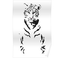 Tranquil Tiger Poster
