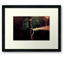 to believe... Framed Print