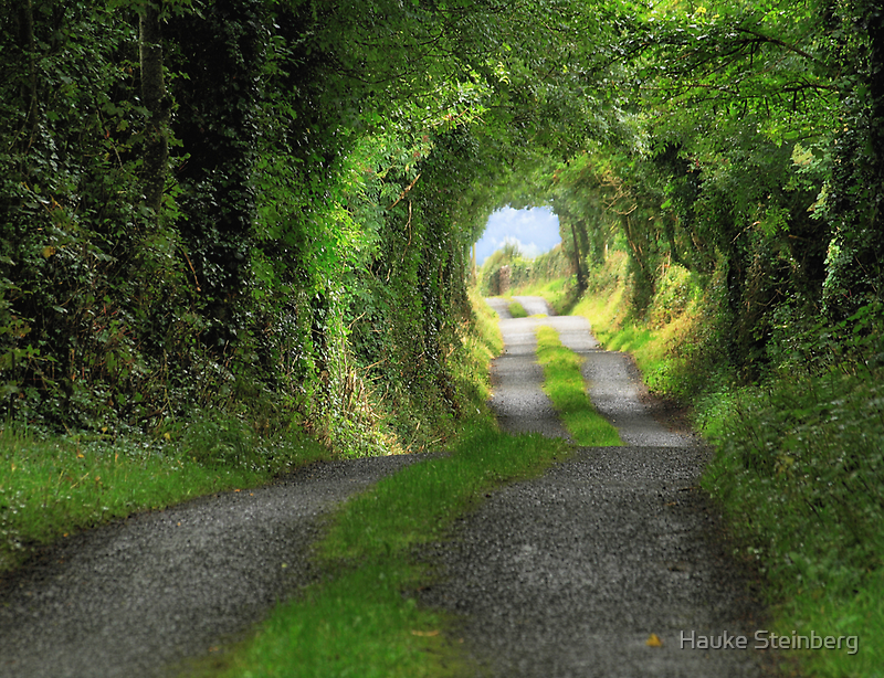 Green Tunnel by Hauke Steinberg