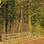 Footpath to Leathley by WatscapePhoto