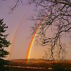 *DOUBLE RAINBOW* by Van Coleman