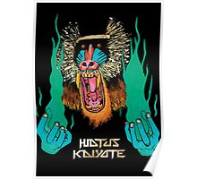 Hiatus Kaiyote - Choose Your Weapon Poster