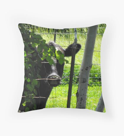 A Sneak Peek Throw Pillow